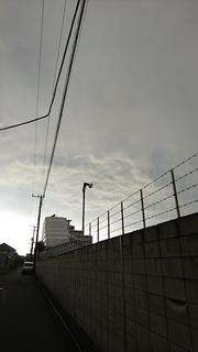 trh3.JPG